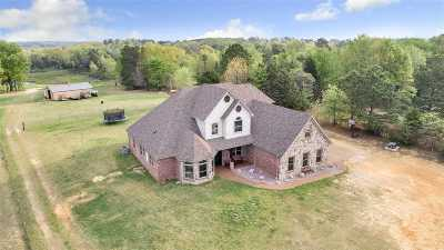Longview Single Family Home For Sale: 10711 County Road 334