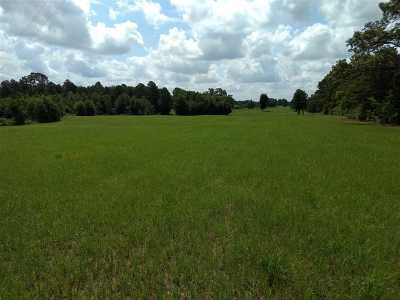 Beckville Residential Lots & Land For Sale: Tbd County Road 264