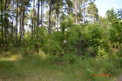 Jefferson TX Residential Lots & Land For Sale: $41,900