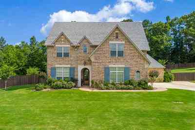 Longview Single Family Home Active, Option Period: 120 Lacebark Lane