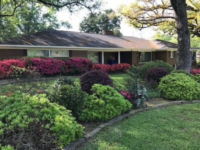 Single Family Home For Sale: 917 Hillcrest