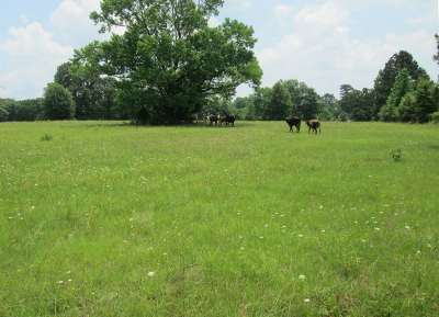 Longview Residential Lots & Land For Sale: Tbd Talley Rd
