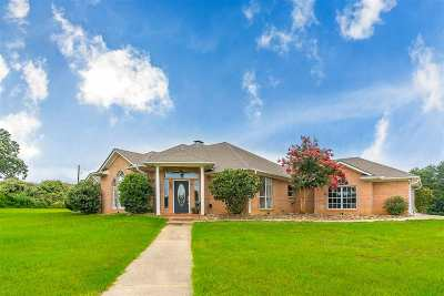Longview Single Family Home For Sale: 4715 Valley Ranch Rd