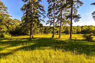 Hallsville Residential Lots & Land For Sale: Tbd Muddy Slough Road