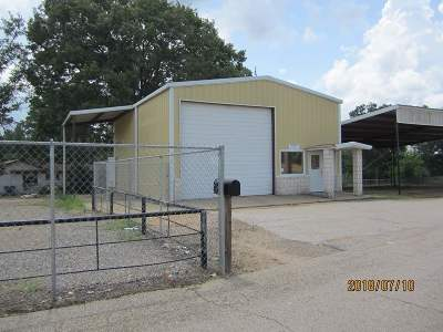 Upshur County Commercial For Sale: 9627 Us Highway 271