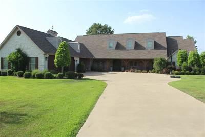 Single Family Home For Sale: 790 Julius Davis Ln