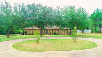 Single Family Home For Sale: 4800 Valley Ranch Rd.