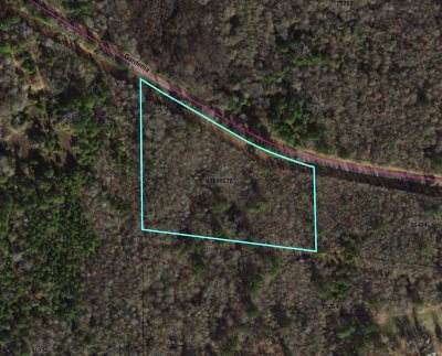 Diana Residential Lots & Land For Sale: Tbd Gardenia