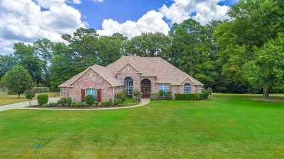 Hallsville Single Family Home For Sale: 220 Whistler Ln