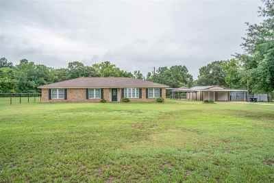 Longview Single Family Home For Sale: 506 Hitching Post