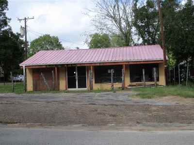 Commercial For Sale: 306 S Helen St.