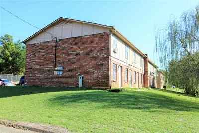 Longview Multi Family Home For Sale: 419 Tammy Lynn Drive