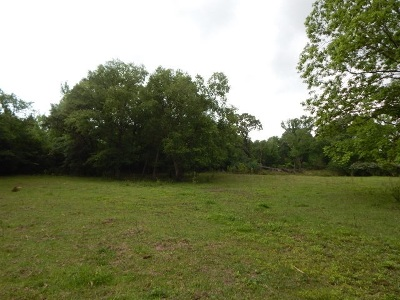 Gilmer Residential Lots & Land For Sale: Tbd Lot 8 Ac. B Plum Rd.