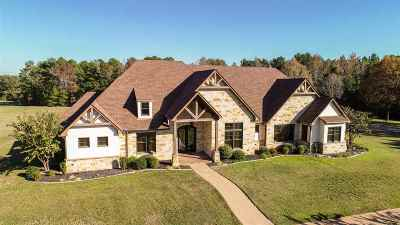 Gilmer Single Family Home For Sale: 700 Private Road 1134