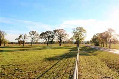 Gilmer Residential Lots & Land For Sale: Tbd Fm 726 East 45.007 Acres