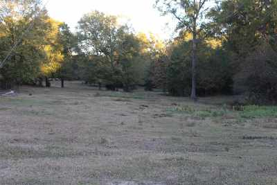 Diana Residential Lots & Land Active, Cont Upon Loan Ap: Tbd Davidson Rd