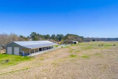 Hallsville Single Family Home For Sale: 4603 Estesville Road