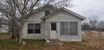 Gilmer Single Family Home For Sale: 10594 N Us Highway 271