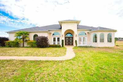 Longview Single Family Home For Sale: 509 Prospect Rd.