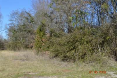 Gilmer Residential Lots & Land For Sale: 4093 N Hwy 155
