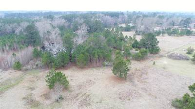 Diana Residential Lots & Land For Sale: Tbd Fm 3245