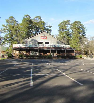 Harrison County Commercial For Sale: 747 Pine Island Road