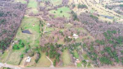 Gregg County, Harison County, Panola County, Rusk County, Uphsur County, Upsher County, Upshur County Single Family Home For Sale: 1819 Spring Hill