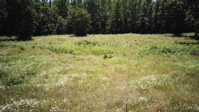 Gilmer Residential Lots & Land For Sale: Lot 31 Jacobin Creek Dr