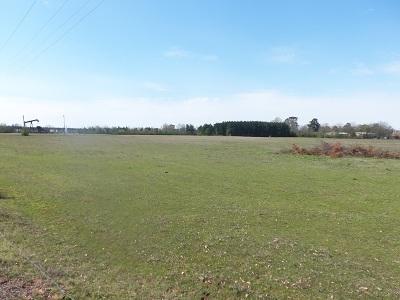 Kilgore Residential Lots & Land For Sale: Tbd Hwy. 349