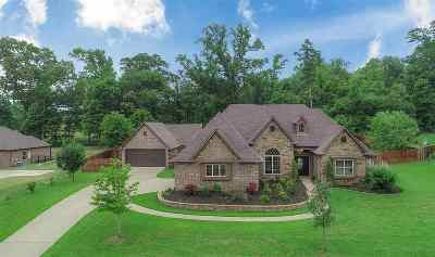 Single Family Home For Sale: 230 Lacebark Lane