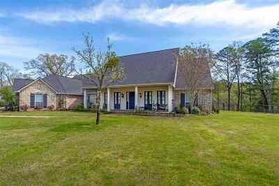 Hallsville Single Family Home For Sale: 230 Whistler Lane