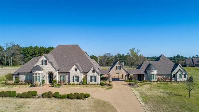 Longview TX Single Family Home For Sale: $1,195,000