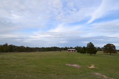 Kilgore Residential Lots & Land For Sale: 3720 Fm 1252 W
