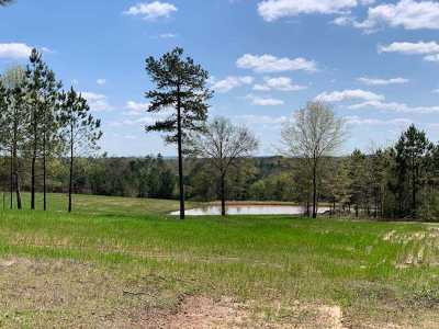 Gilmer Residential Lots & Land For Sale: Tbd Sh 154e