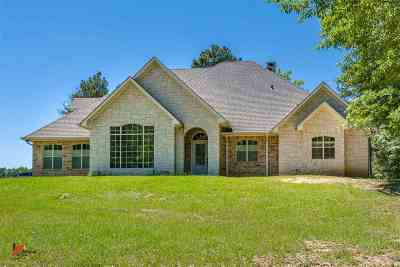 Panola County Single Family Home For Sale: 520 County Road 436