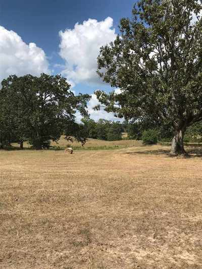 Gilmer Residential Lots & Land For Sale: Tbd Hwy 300