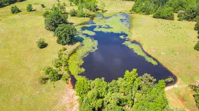 Gilmer Residential Lots & Land For Sale: Tbd Locust/Crabapple