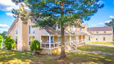 Henderson Single Family Home For Sale: 3842 S Fm 3310