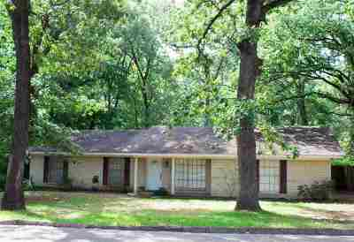 Longview Single Family Home For Sale: 1002 Camille Dr.
