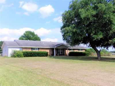 Henderson Single Family Home For Sale: 6945 S County Road 462