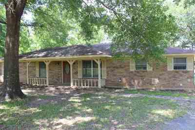 Henderson Single Family Home For Sale: 4677 S County Road 317