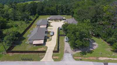 Longview Multi Family Home For Sale: 308 Beaty Drive