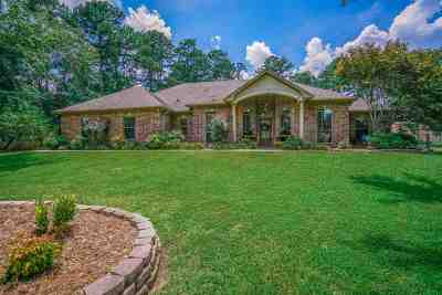 Hallsville Single Family Home For Sale: 507 Trailridge