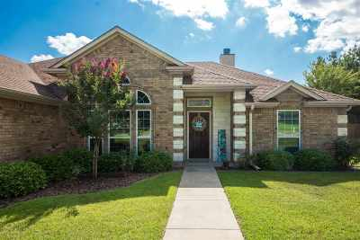 Henderson Single Family Home For Sale: 106 Westview Dr