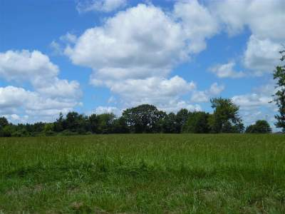 Panola County Residential Lots & Land For Sale: Tbd Fm 10