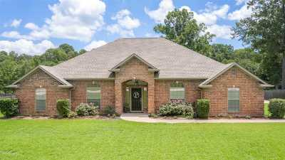Longview Single Family Home For Sale: 175 Kayla Ln.