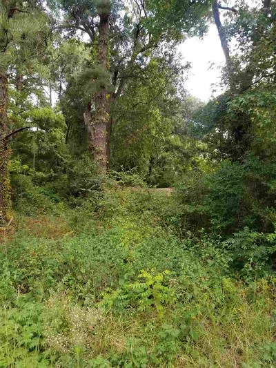 Gregg County Residential Lots & Land For Sale: Tbd Gum Springs (1.499 Acres) Rd