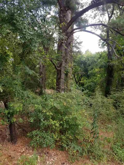 Gregg County Residential Lots & Land For Sale: Tbd Gum Springs (4.263 Acres) Rd
