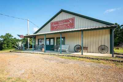 Big Sandy Commercial For Sale: 310 W Broadway