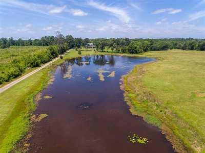Harrison County Single Family Home For Sale: 992 Bill Davis Road